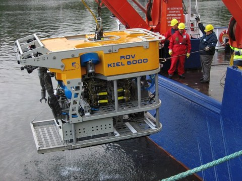 ROV image scaled to 800x600